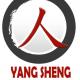 Logo CNYS
